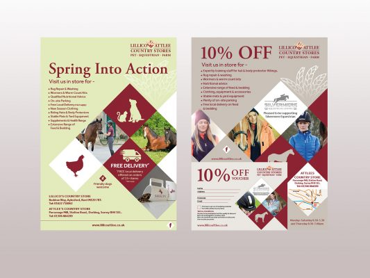 Lillico Attlee Country Store Flyer Examples