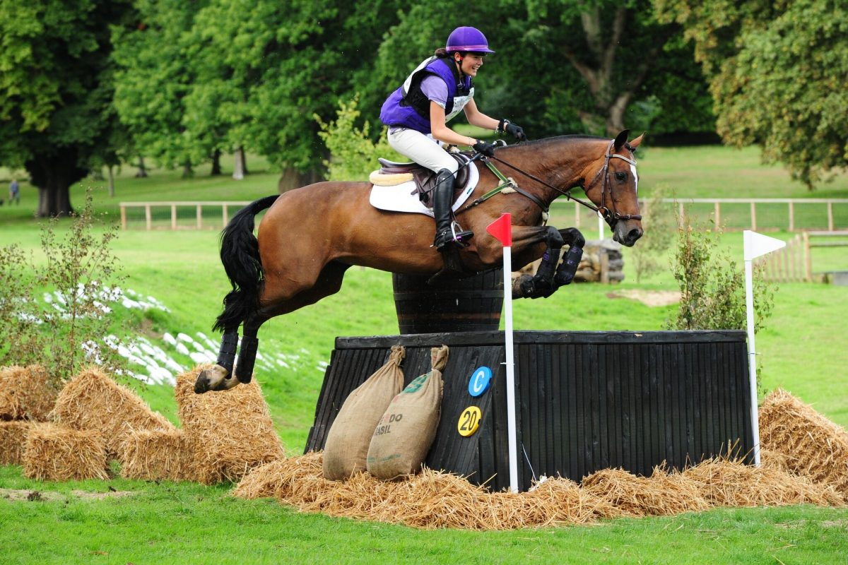 new team member maddie jumping her horse penny at chilham