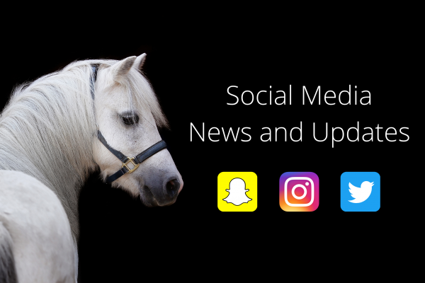 social media news and updates